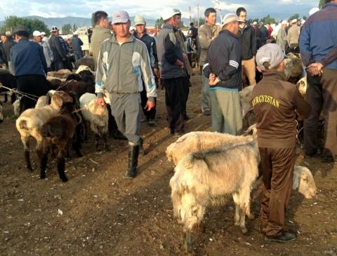 Talas, Kirgizië.